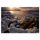 Icy coast and ice floes of Bothnian Sea Kont Natur