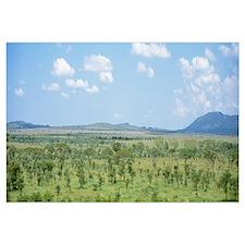 Serengeti Plains Tanzania Africa