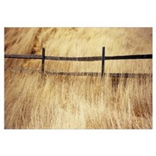 Wooden fence in the dry grass, Mt Tamalpais, Marin