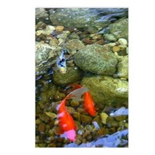 Koi Pond Postcards (Package of 8)