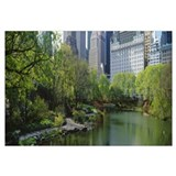 Pond in a park, Central Park South, Central Park,