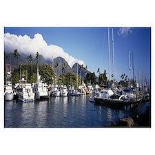 Boats docked at a harbor, Lahaina, Maui, Hawaii
