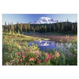 Mt Rainier and wildflowers at Reflection lake Mt R