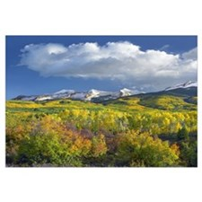 East Beckwith Mountain Colorado