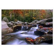 Little Pigeon River, Great Smoky Mountains Nationa