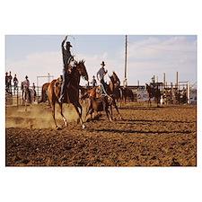 Cowboys roping a calf, North Dakota