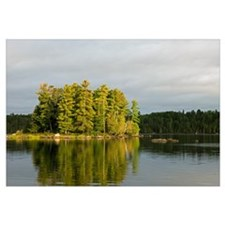 Trees growing on small island, water reflection, L