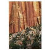 Smooth canyon wall, Capitol Gorge, Capitol Reef Na