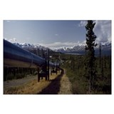 Pipeline passing through a landscape, Trans-Alaska