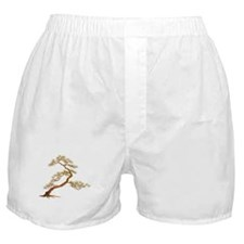 An old pine Boxer Shorts