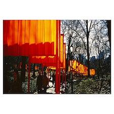 New York, New York City, Central Park, People walk