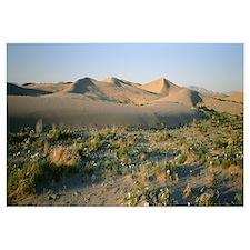 Sunrise Southern Mojave Desert CA