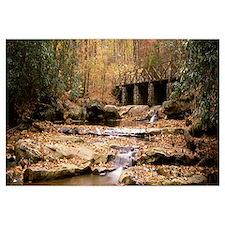 Pennsylvania, Ohiopyle State Park, Cucunber Run, S