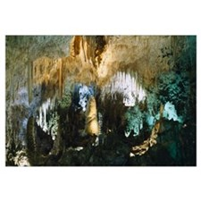 Limestone in a cave, Carlsbad Caverns National Par