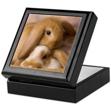 Cuddle Bunnies Keepsake Box
