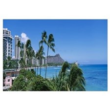 Palm trees on the beach, Waikiki Beach, Honolulu,