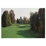 Trees on a golf course, Baltimore County, Maryland