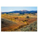 Wyoming, Yellowstone National Park, Lamar Valley,