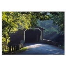 Covered bridge in a forest, Lancaster, Pennsylvani