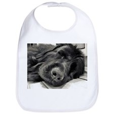 Sleeping the day away Bib