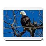 Majestic Eagle Mousepad