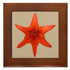 Orange Lily Framed Tile