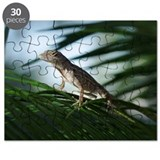 Lizard on Palm Leaf Puzzle
