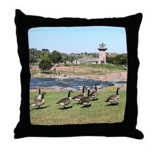 At The Falls 2 Throw Pillow