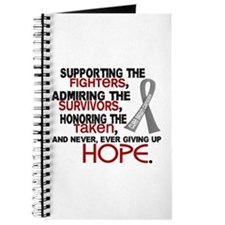 © Supporting Admiring 3.2 Brain Cancer Journal
