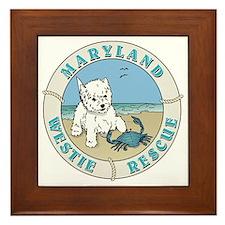 Cute Westie rescue Framed Tile