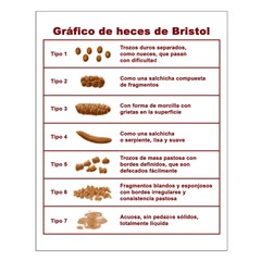 Gráfico de heces de Bristol Posters