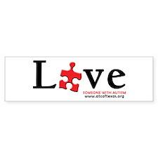 Love Someone with Autism Sticker (Bumper 10 pk)