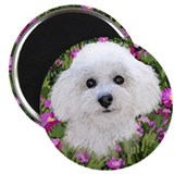 "Bichon in Flowers 2.25"" Magnet (100 pack)"