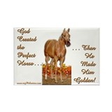 Golden Palomino Rectangle Magnet (100 pack)