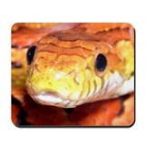 Corn Snake 2 Mousepad