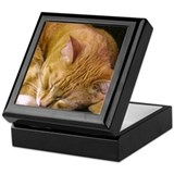 Sleeping Cat Keepsake Box