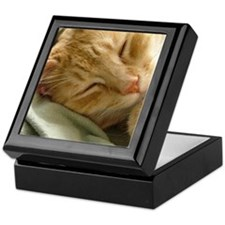 Sleeping Kitty Keepsake Box