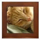 Sleeping Kitty Framed Tile