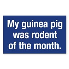 Guinea pig rodent of the month Sticker (Rect)