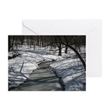 Creek in Winter Greeting Cards (Pk of 20)