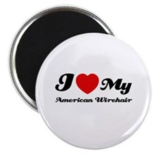 "I love my American wirehair 2.25"" Magnet (100 pack"