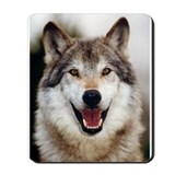 Orca Wolf Smile Mousepad