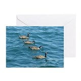 Line of Geese Greeting Cards (Pk of 10)