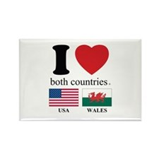 USA-WALES Rectangle Magnet