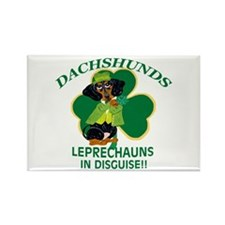 Dachshunds Are Leprechauns In Rectangle Magnet