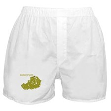 Santorum Boxer Shorts