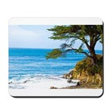 West Cliff Dr. Mousepad