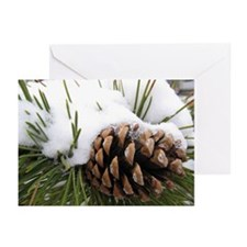 Cute Pinecone Greeting Cards (Pk of 10)