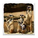Meerkat Trio Tile Coaster