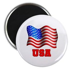 USA Flag Red White & Blue Magnet